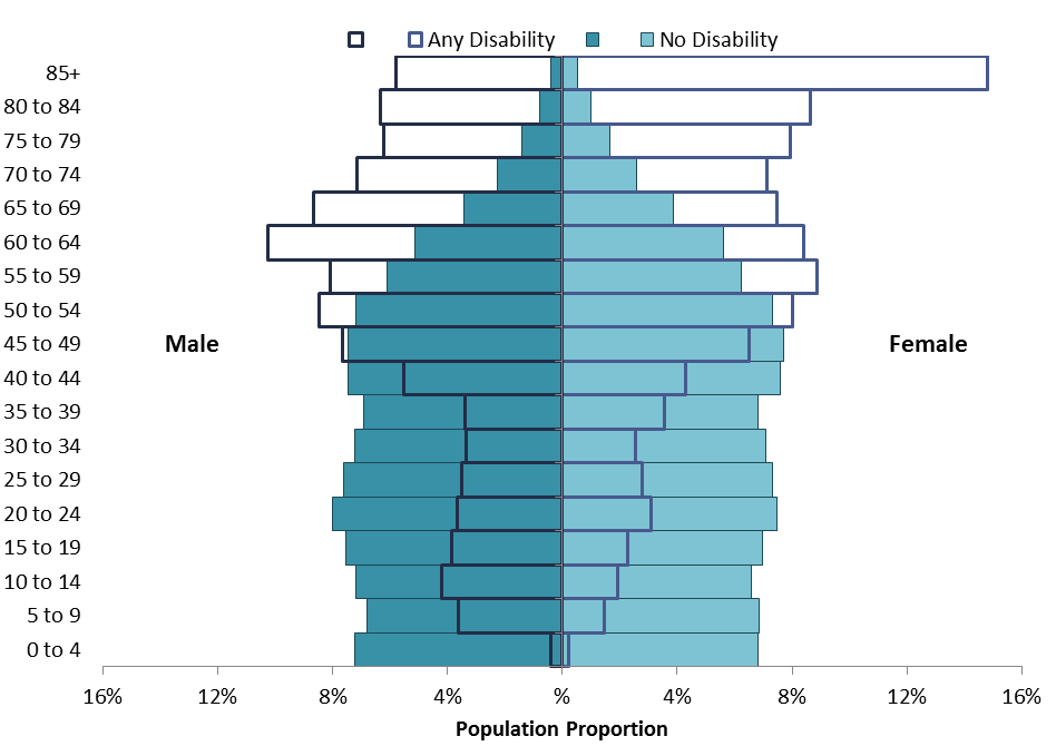 Disability Age Pyramid